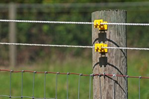 install-an-electric-fence_300_200_300_200